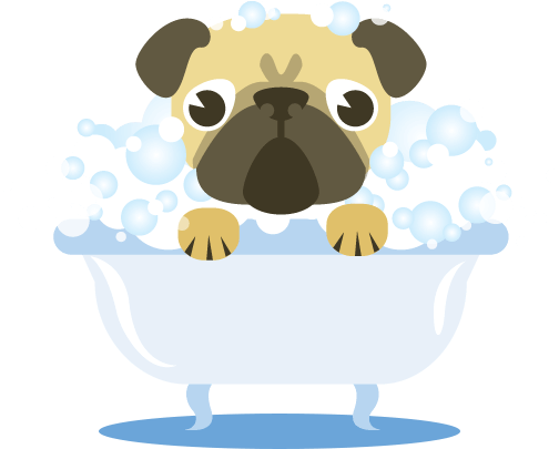 your dog while dogs will tend to instinctively shake off excess water