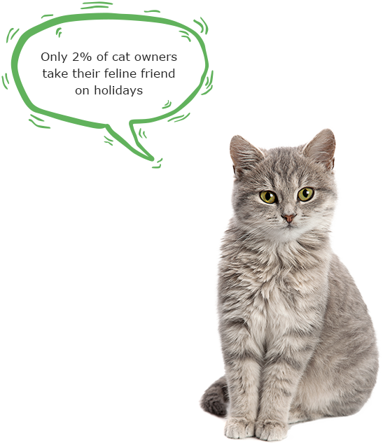 only 2% of cat owners take their feline friend on holidays