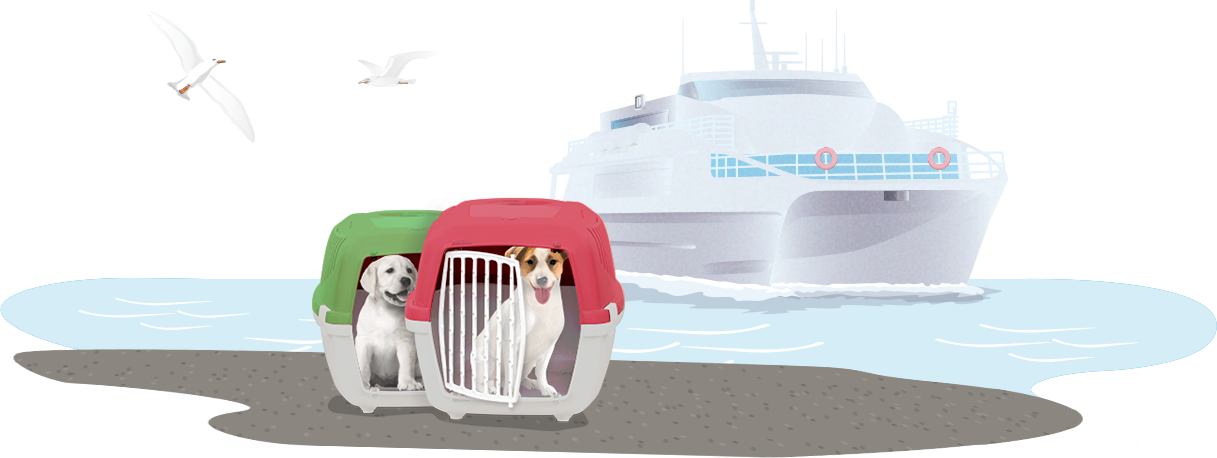 dogs with a ship in background