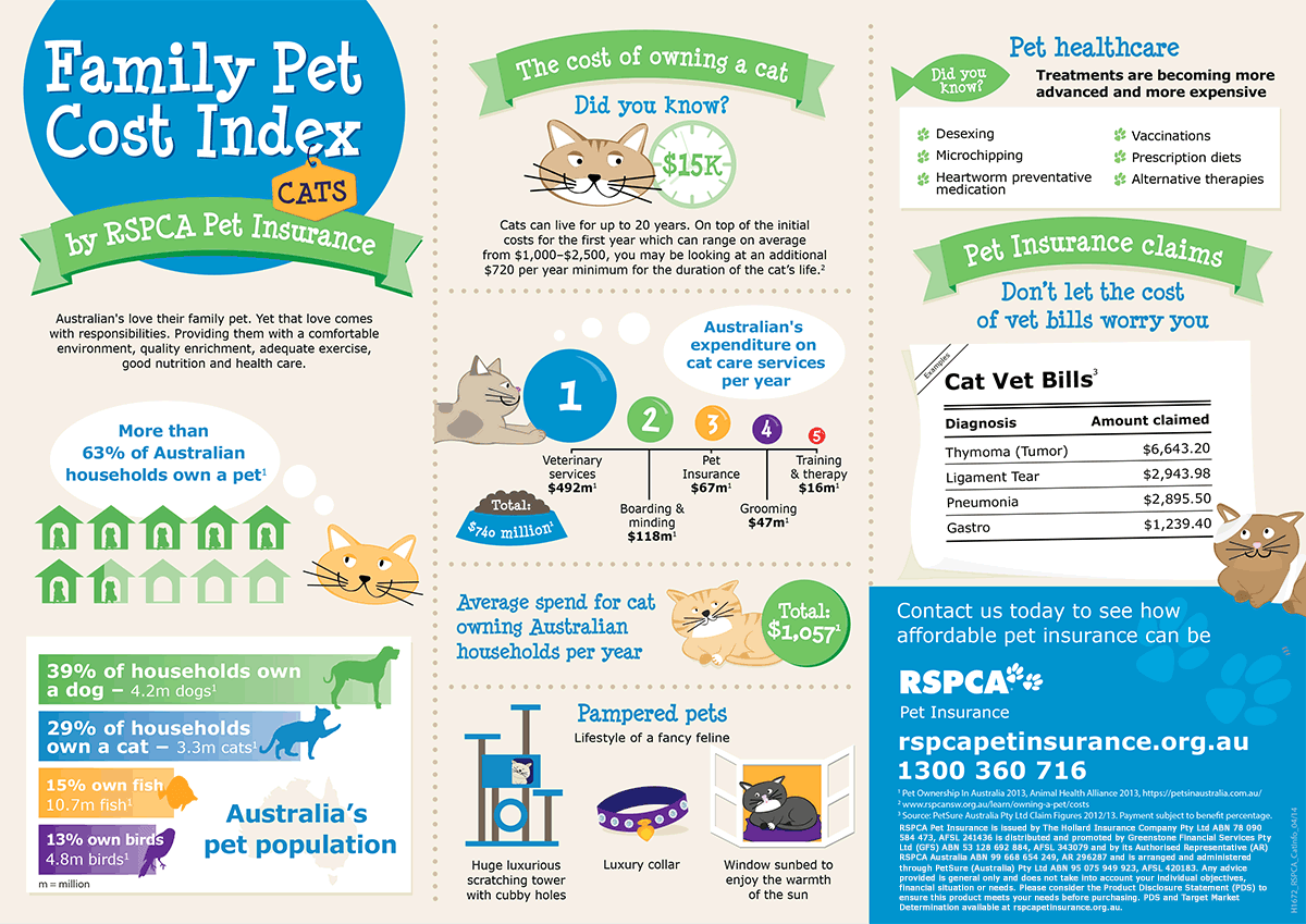 how to get pet sitter insurance