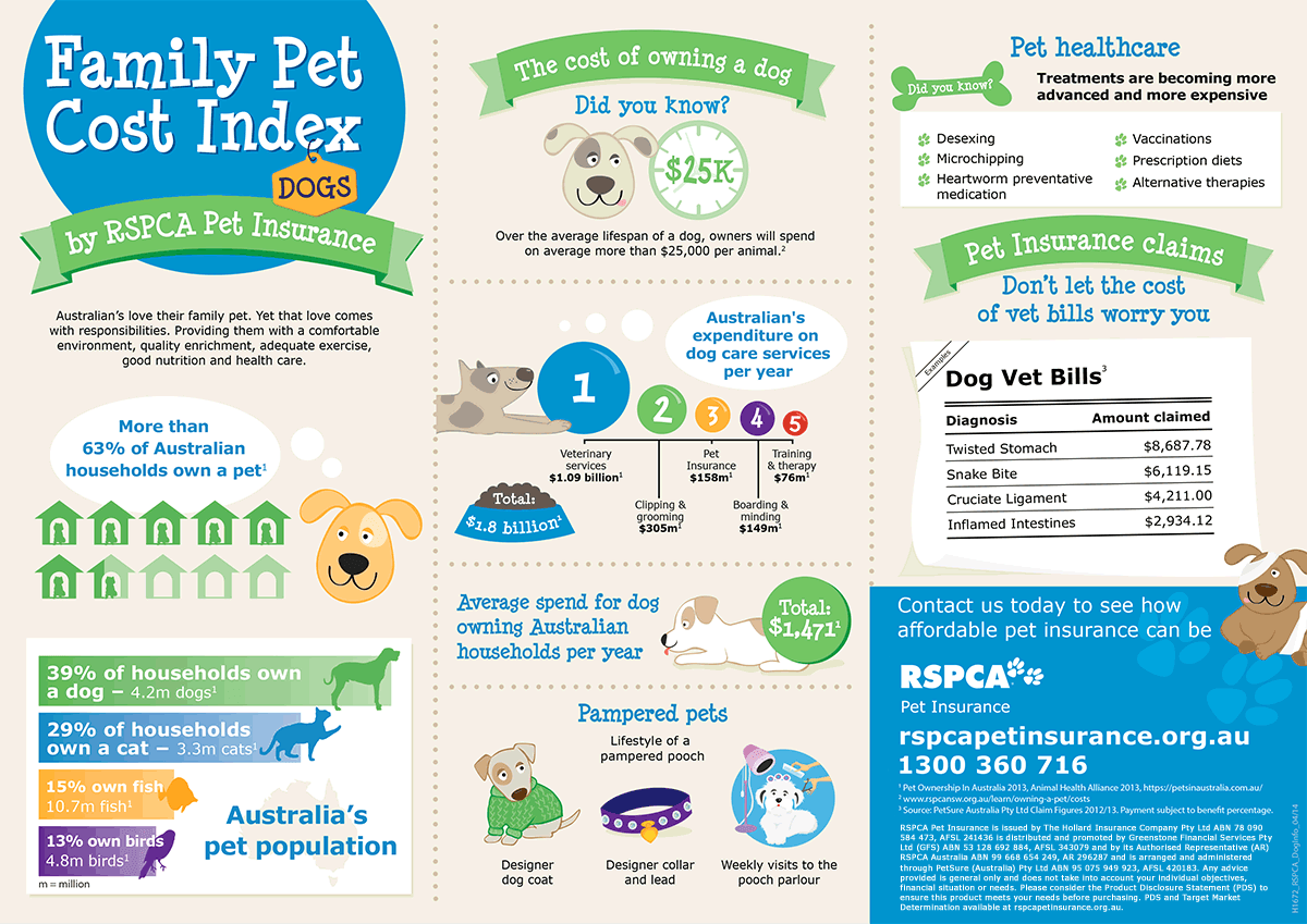 The cost of owning a dog – Infographic | RSPCA Pet Insurance