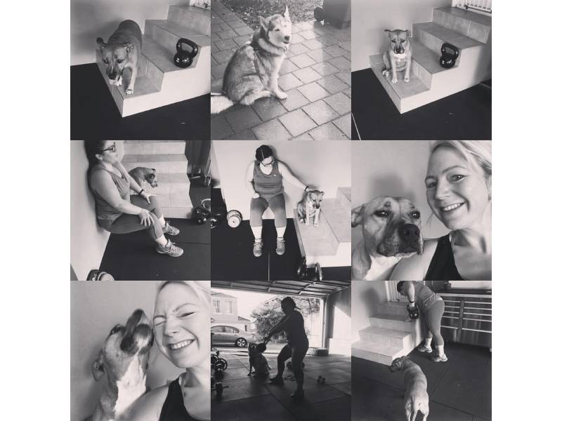 collage of photos with owner and adopted dog