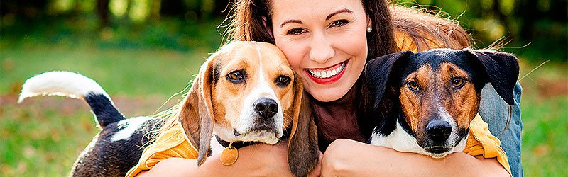 Cost Of Pet Ownership Rspca Pet Insurance